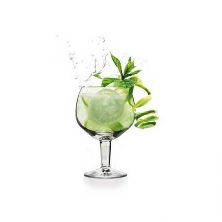 Molde para hielos Gin Tonic - VIN BOUQUET